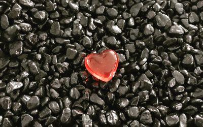 Au coeur de notre monde